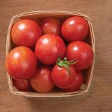 Photo of a small square basket with 10 or so round red tomatoes.