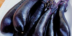 "Millionaire Eggplant - brilliant black-purple fruit is long, growing to over 8"" in length"